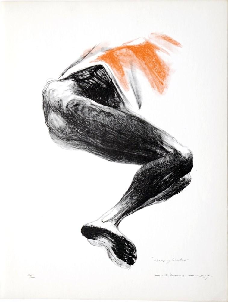 Lot #96: GUILLERMO MEZA - Tierra y Libertad - Color lithograph