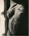 Lot #86: MAN RAY - Torso (Return to Reason) - Original vintage photogravure