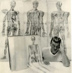 Lot #1657: GEORGE PLATT LYNES - Skeletons with Penis - Original vintage photogravure