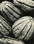 Lot #17: EDWARD WESTON - Winter Squash - Original vintage photogravure