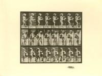 Lot #2020: EADWEARD MUYBRIDGE [d'apres] - Girl Watering - Original photogravure