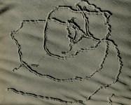 Lot #1565: EDWARD WESTON - Tracks on Sand, Oceano - Original vintage photogravure