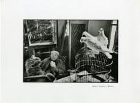 Lot #1228: HENRI CARTIER-BRESSON - Henri Matisse with Birds, Vence, France - Original photogravure