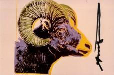 Lot #689: ANDY WARHOL - Bighorn Ram - Original color analogue photograph