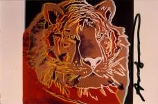 Lot #172: ANDY WARHOL - Siberian Tiger - Original color analogue photograph