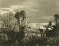 Lot #1828: PAUL STRAND - Near Saltillo - Original photogravure