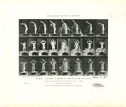 Lot #1505: EADWEARD MUYBRIDGE - Woman: Pouring a Basin of Water over Her Head - Original photomezzotint & letterpress