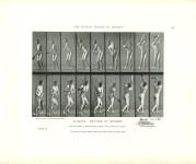 Lot #2206: EADWEARD MUYBRIDGE - Athlete: Batting at Cricket - Original photomezzotint & letterpress