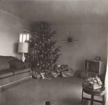 Lot #8: DIANE ARBUS - Xmas Tree in a Living Room in Levittown, Long Island, N.Y - Original photogravure