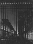 Lot #1937: BRASSAI [gyula halasz] - La grille du Jardin du Luxembourg - Original photogravure