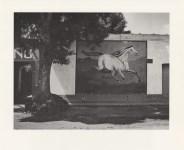 Lot #1010: MANUEL ALVAREZ BRAVO - Paisaje y Galope (Paisaje de Equitacion) - Original photogravure