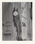 Lot #2081: MANUEL ALVAREZ BRAVO - El Pez Grande Se Come a los Chicos - Original photogravure
