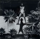 Lot #1730: HELMUT NEWTON - Raquel Welch in Her Backyard, Beverly Hlls - Original vintage photolithograph